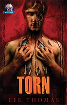 TORN (Novella Series)